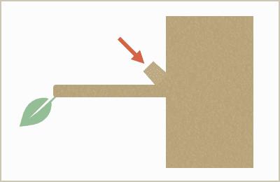 剪定前の図