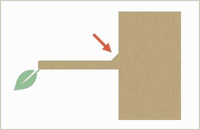 剪定後の図