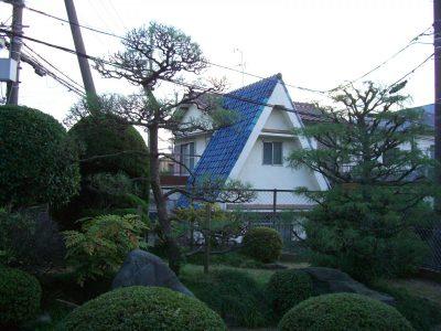 玄関に門かぶりの松1本と庭にも黒松4本のお庭