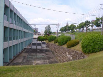 工場の年間植栽管理、低木剪定と稲荷周辺の高木剪定
