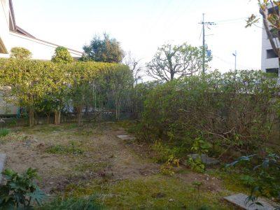 住居移転される前にお庭の剪定とサクラ伐採