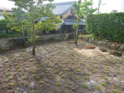 リフォーム後の庭
