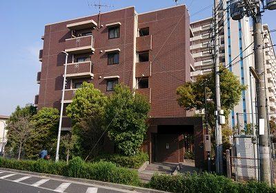 マンションの植栽剪定|生い茂った木が1階の日当たり妨害 大阪市平野区