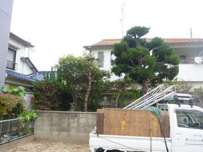 敷地からはみ出たウバメガシなどの植木を剪定|隣の更地に家が建つ 大阪府寝屋川市