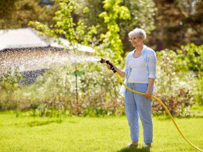 芝の水やり