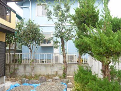 7本の庭木を撤去したい|庭を畑にしたいけれど木が邪魔 大阪府枚方市