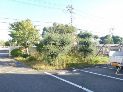 工場の植栽剪定と草刈り|敷地の高木剪定と駐車場の草刈り 東大阪市