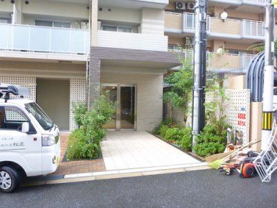 植栽の手入れ|自社ビルと管理物件など3箇所を1日で完了 大阪市