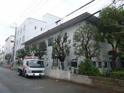 道沿いの工場敷地のヤマモモ6本を剪定 大阪府枚方市