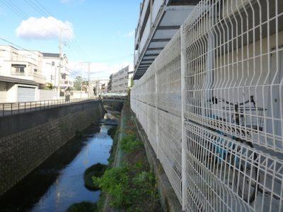 マンション駐輪所のフェンスのツタ取りと植栽剪定 大阪府豊中市