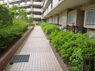 マンション植栽の害虫対策|年間管理で定期的な薬剤散布 京都府八幡市