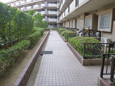 京都府八幡市植栽管理・作業後