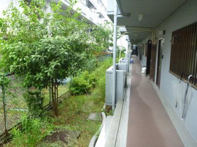 マンション敷地内4箇所の植栽剪定と除草作業 大阪府摂津市